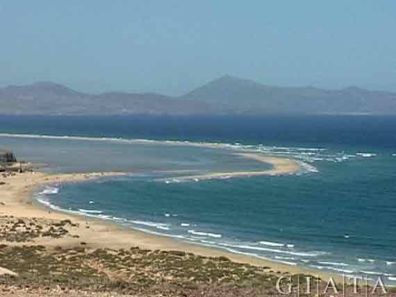 Küste Costa Calma, Fuerteventura, Kanaren, Spanien ( Urlaub, Reisen, Lastminute-Reisen, Pauschalreisen )
