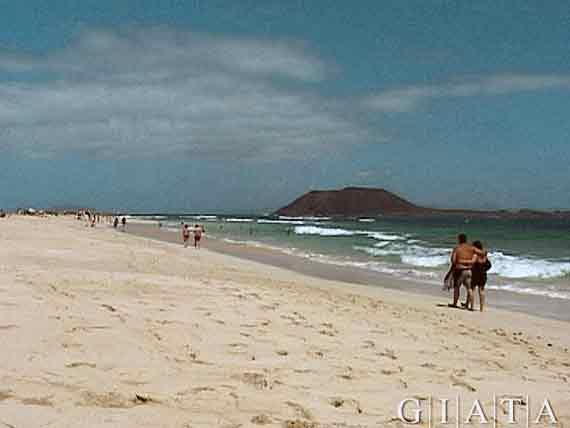 Strand Costa Calma, Fuerteventura, Kanaren ( Urlaub, Reisen, Lastminute-Reisen, Pauschalreisen )