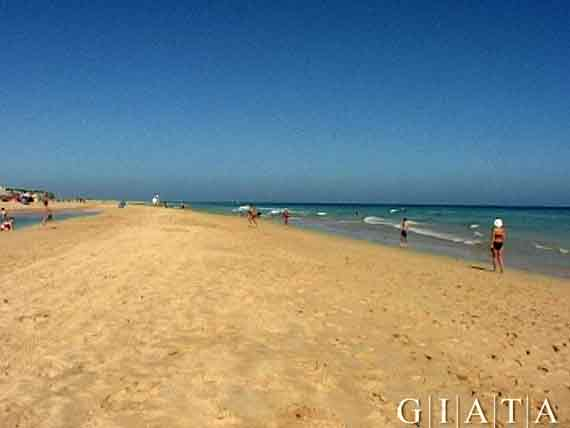 Playa de Janida, Jandia, Morro Jable, Fuerteventura, Kanaren ( Urlaub, Reisen, Lastminute-Reisen, Pauschalreisen )