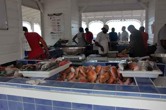 Karibik-Insel St Maarten, Philipsburg - Fischmarkt (Kleine Antillen) ( Urlaub, Reisen, Lastminute-Reisen, Pauschalreisen )