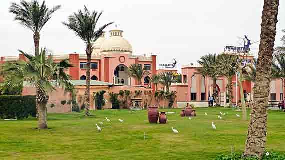 Hotel Beach Albatros Garden in Hurghada - Ägypten ( Urlaub, Reisen, Pauschalreisen, Last Minute Reisen )