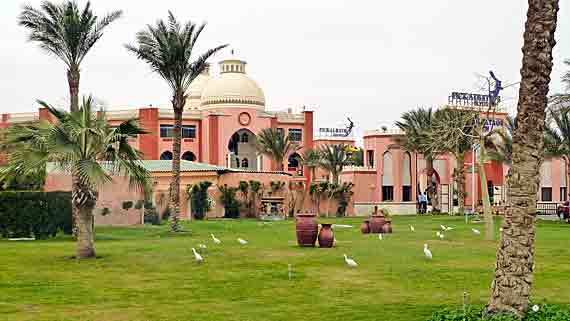 Hotel Beach Albatros Garden Hurghada Agypten Myreisen De