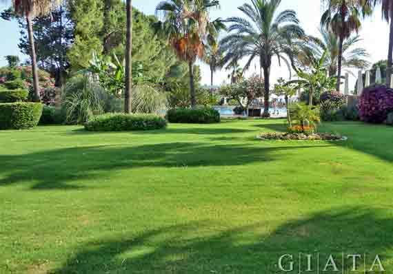 Oleander Beach Resort - Side-Kumköy, Türkische Riviera, Türkei ( Urlaub, Reisen, Lastminute-Reisen, Pauschalreisen )