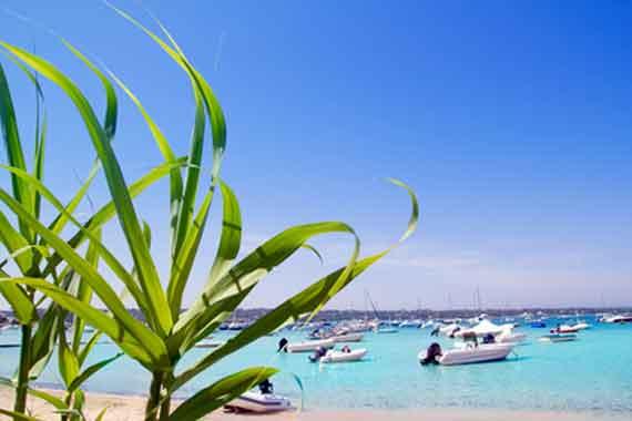 Balearen, Formentera - Lagune Estany des Peix ( Urlaub, Reisen, Lastminute-Reisen, Pauschalreisen )