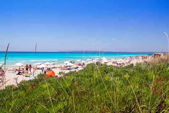 Formentera, Balearen - Playa de Migjorn, Strandabschnitt Es Arenals ( Urlaub, Reisen, Lastminute-Reisen, Pauschalreisen )