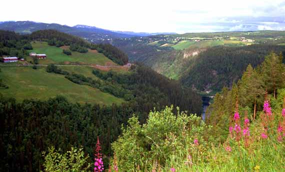 Landschaft Norwegen ( Urlaub, Reisen, Lastminute-Reisen, Pauschalreisen )