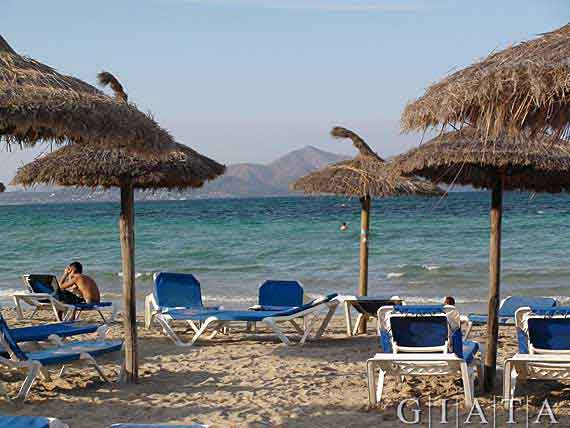 Strand Ca'n Picafort (Can Picafort), Bucht von Alcudia, Mallorca, Balearen