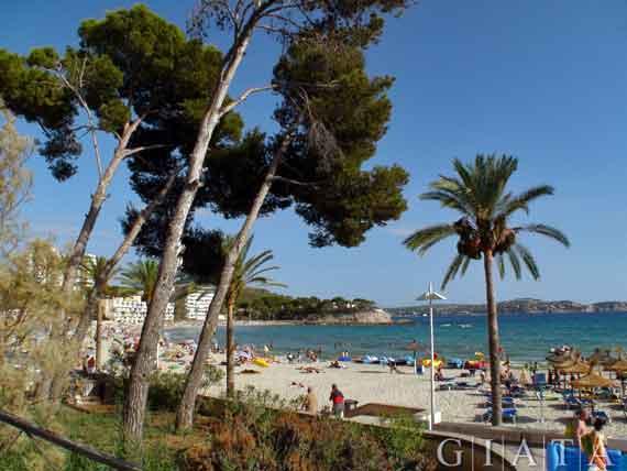 Strand von Peguera (inoffiziell kastilisch Paguera), Mallorca, Balearen