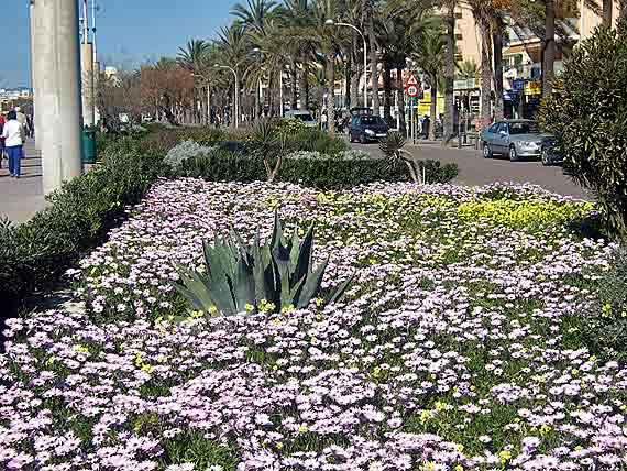 Promenade Playa de Palma (Platja de Palma), Palma de Mallorca, Balearen
