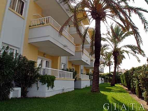 Palm garden appartments puerto de alcudia mallorca for Katzennetz balkon mit hotel palm garden alcudia