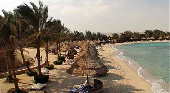 Mövenpick Resort El Quseir - Marsa Alam, Rotes Meer, Ägypten ( Urlaub, Reisen, Lastminute-Reisen, Pauschalreisen )