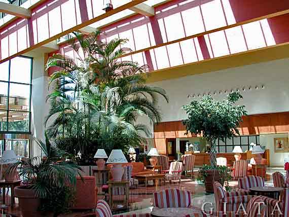 SBH Club Paraiso Playa - Esquinzo-Jandia, Fuerteventura, Kanaren ( Urlaub, Reisen, Lastminute-Reisen, Pauschalreisen )