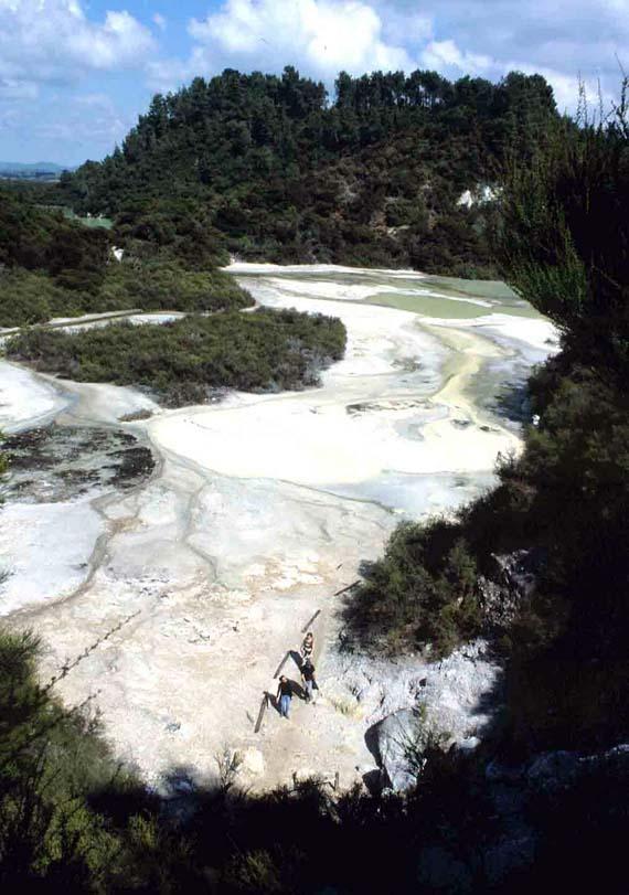 Neuseeland, Geyser im Wai-O-Tapu Thermal Wonderland ( Urlaub, Reisen, Lastminute-Reisen, Pauschalreisen )