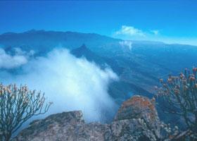 Teneriffa - Teide ( Urlaub, Reisen, Lastminute-Reisen, Pauschalreisen )
