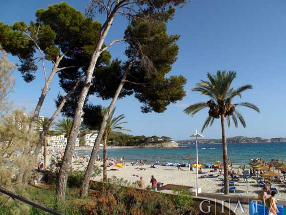 Peguera (inoffiziell kastilisch Paguera), Mallorca, Spanien ( Urlaub, Reisen, Lastminute-Reisen, Pauschalreisen )