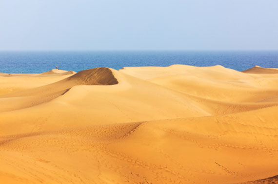 Kanaren, Gran Canaria, Dünen von Maspalomas ( Urlaub, Reisen, Lastminute-Reisen, Pauschalreisen )