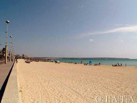 Sandstrand von S'Arenal (El Arenal), Mallorca ( Urlaub, Reisen, Lastminute-Reisen, Pauschalreisen )