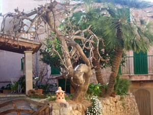 Mallorca - Banyalbulfar ( Urlaub, Reisen, Lastminute-Reisen, Pauschalreisen )