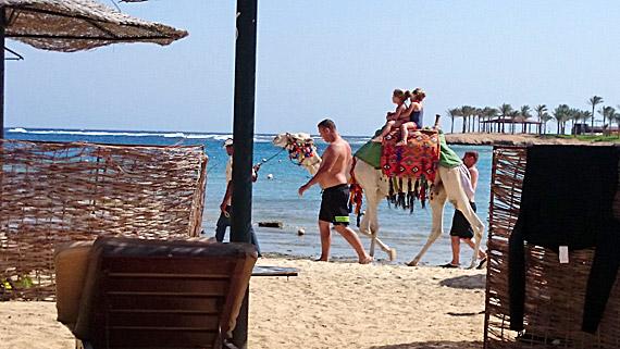 Hotelbucht Brayka Bay Resort in Marsa Alam, Ägypten (Urlaub, Reisen, Lastminute-Reisen, Pauschalreisen)