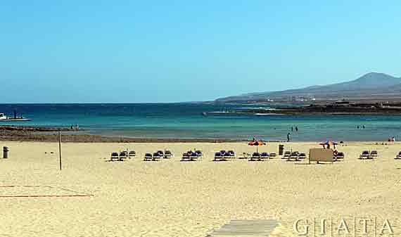 Strand von Caleta de Fuste, Fuerteventura, Kanaren ( Urlaub, Reisen, Lastminute-Reisen, Pauschalreisen )